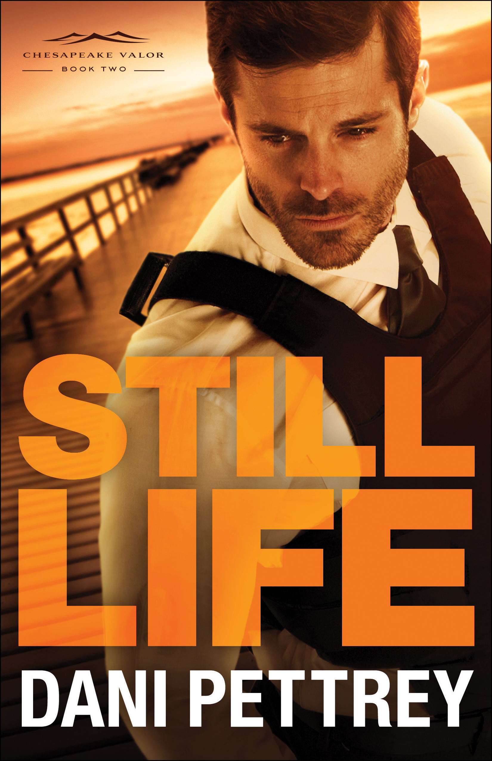 Book review of Still Life by Dani Pettrey (Bethany House) by papertapepins