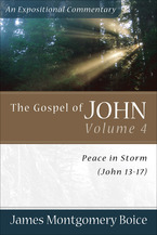 The Gospel of John, Volume 4