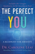 The Perfect You, ITPE
