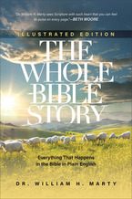 The Whole Bible Story, Illustrated Edition